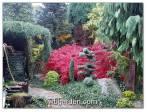 Zahrada plná čarověníků - podzim